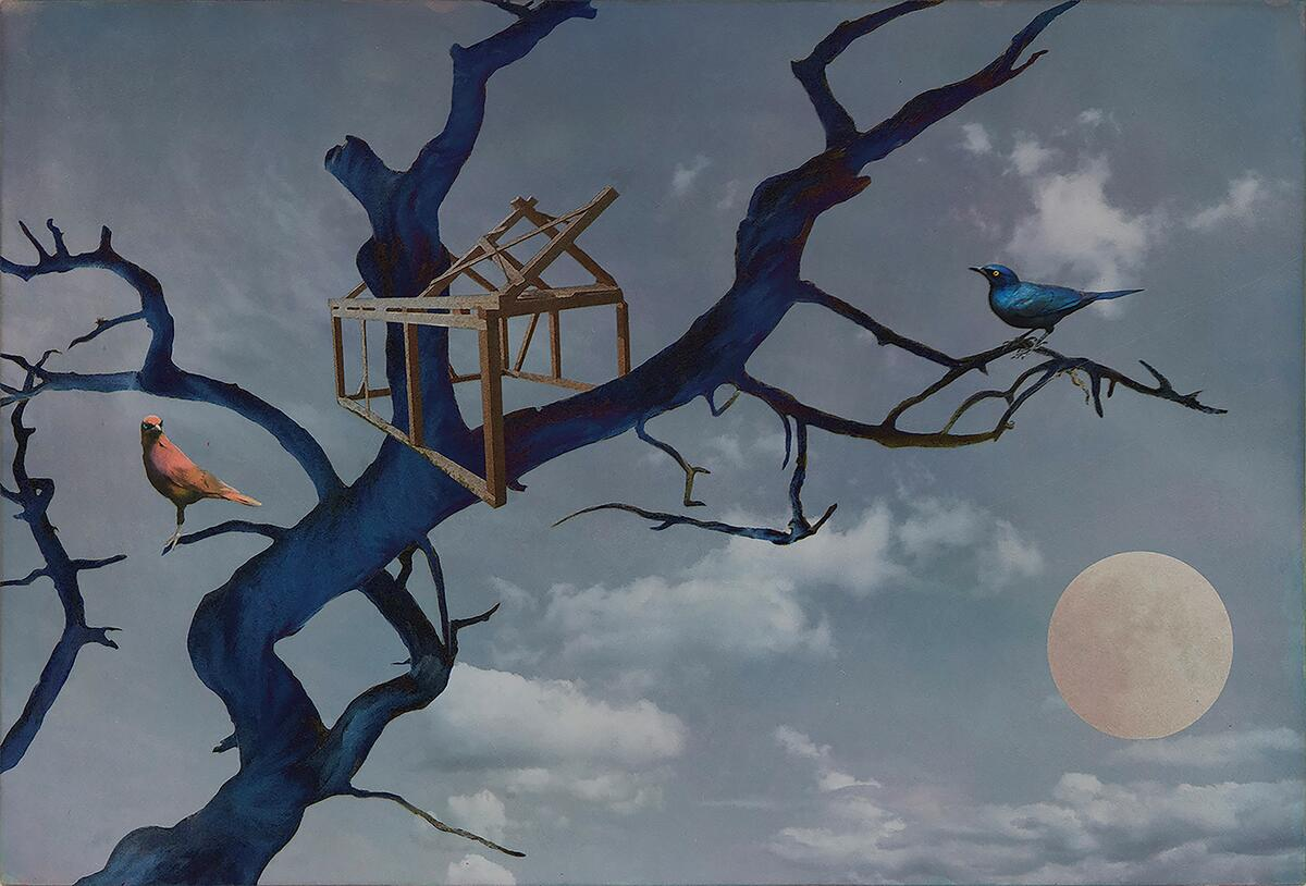 "Bildet viser ""Trekkfuglens dilemma"" (Foto/Photo)"