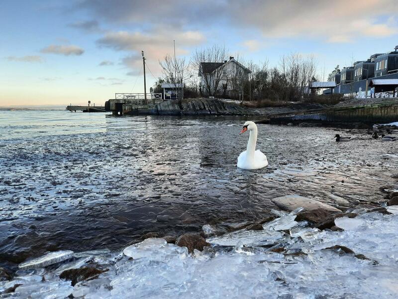Vinteridyll i Vollen. Foto: Anita Aasen (Foto/Photo)