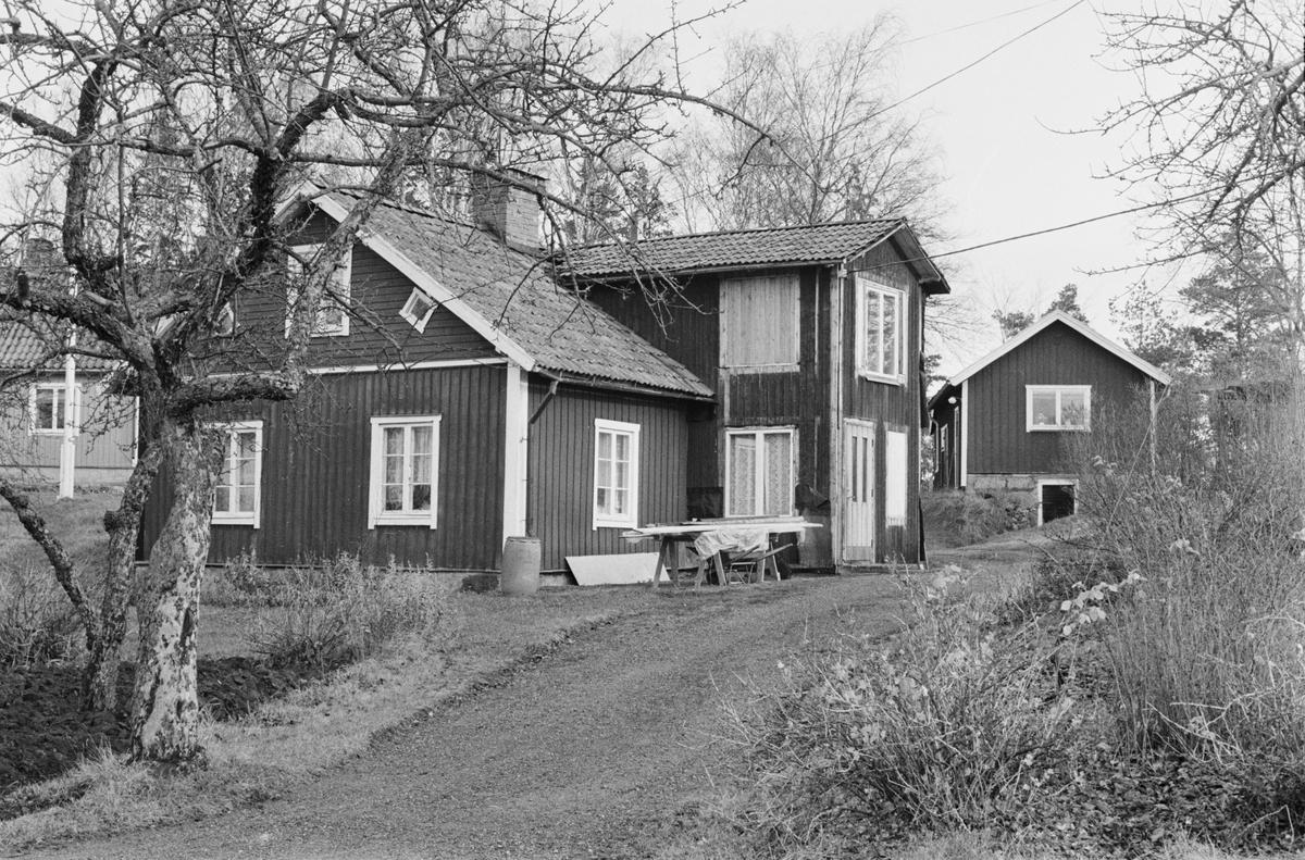 Bostadshus och källarstuga, Svia 3:7, Enbacken, Vaksala socken, Uppland 1978