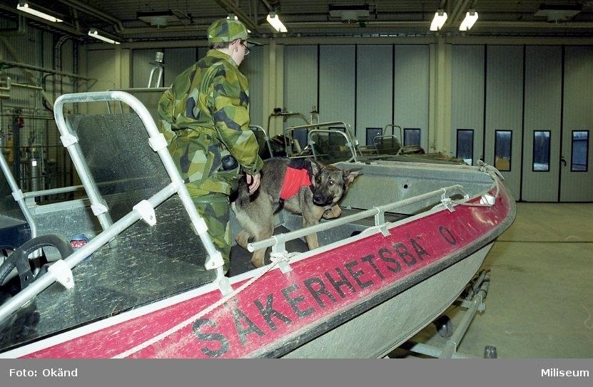 Hundutbildning.  Hund på båt.