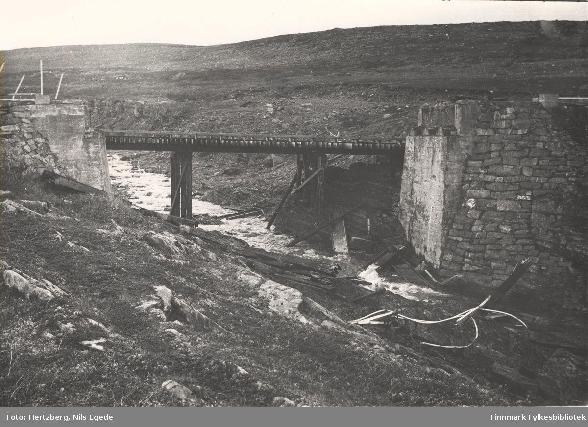 Provisorisk bru på Ifjordfjellet, 1946. Østre Gurujok. Kjørevei til Illas.