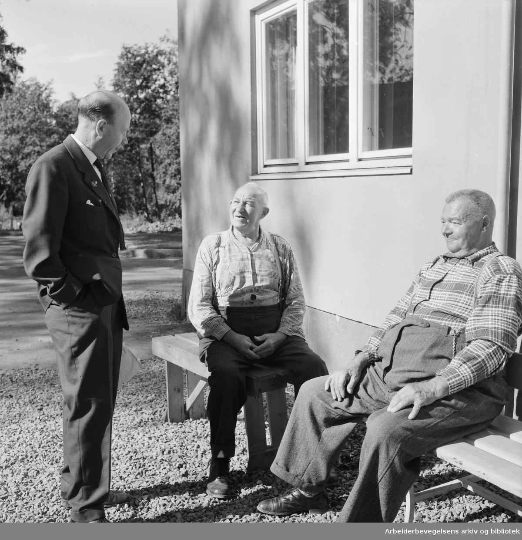 Kommunevalget 1959. Agitasjon hos beboerne på trygdeboligen i Maridalsveien 215. Hans Sundrønning fra Oslo Arbeiderparti snakker med Albin Eriksen og Karl Johansen. September 1959