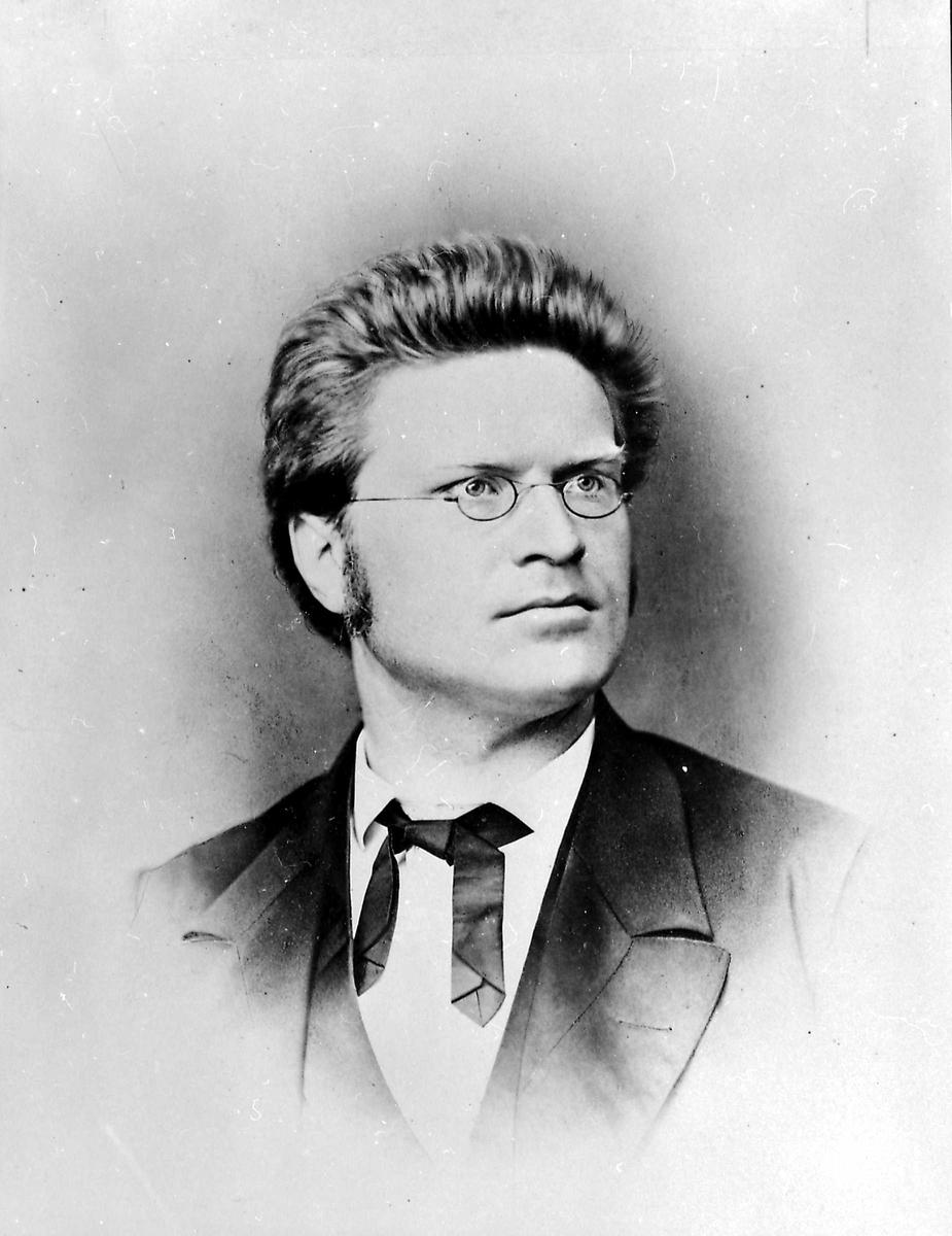 Portrett, Bjørnstjerne Bjørnson