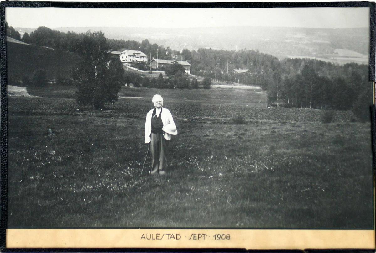 BB med stokk og hatt i hånden. Han er fotografert på jordet nedenfor Aulestad.