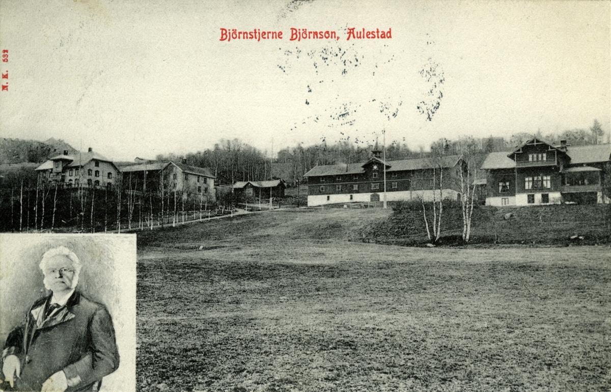 Bjørnson, portrett, Aulestad, Erlinghuset, brevkort,