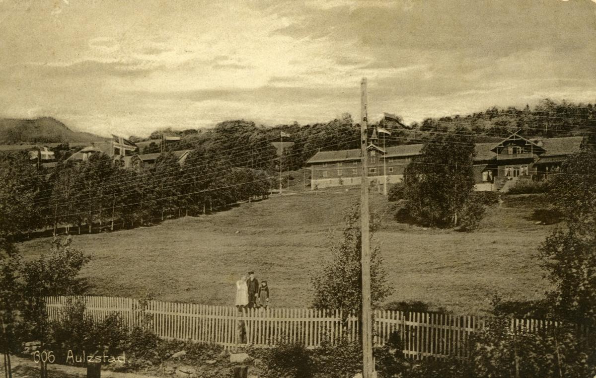 Aulestad, Nedre Aulestad (Erling-huset), postkort
