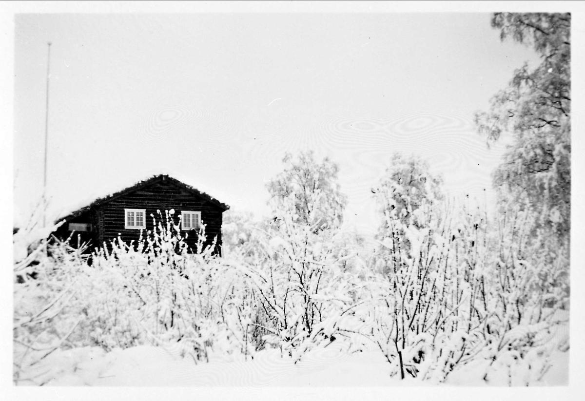 Snø, hus, hage,