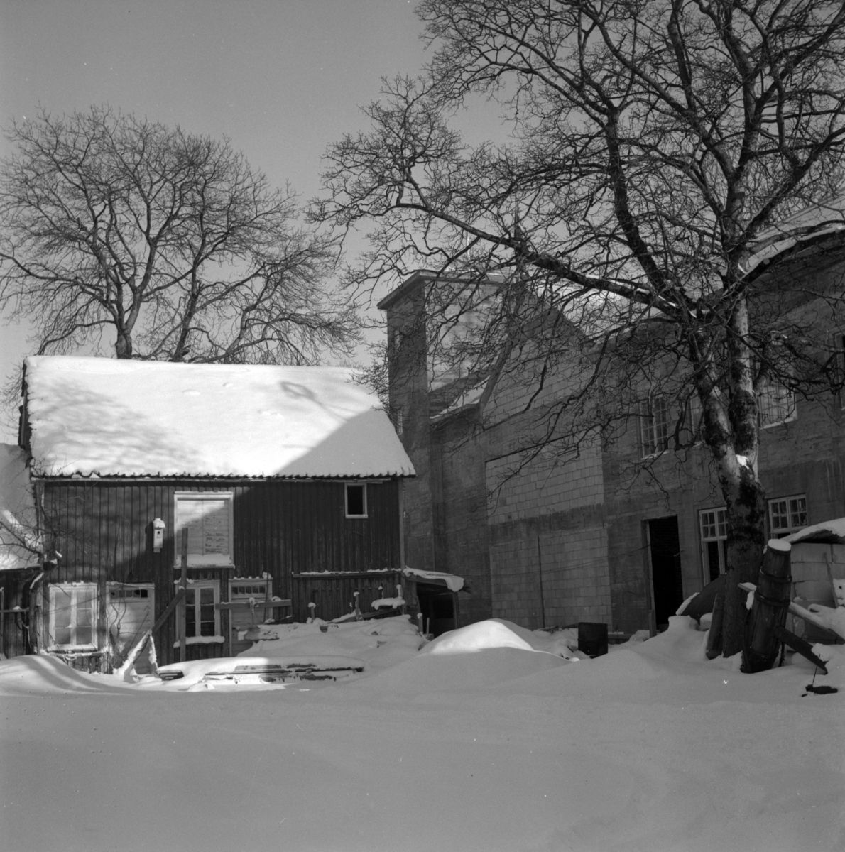 Aust-Agder-Museets første byggetrinn på Langsæ. Rest av uthuset der byggetrinn 2 skal oppføres. Midlertidig gjennmuring. Tunområdet med tuntre og anker.  Vinter.