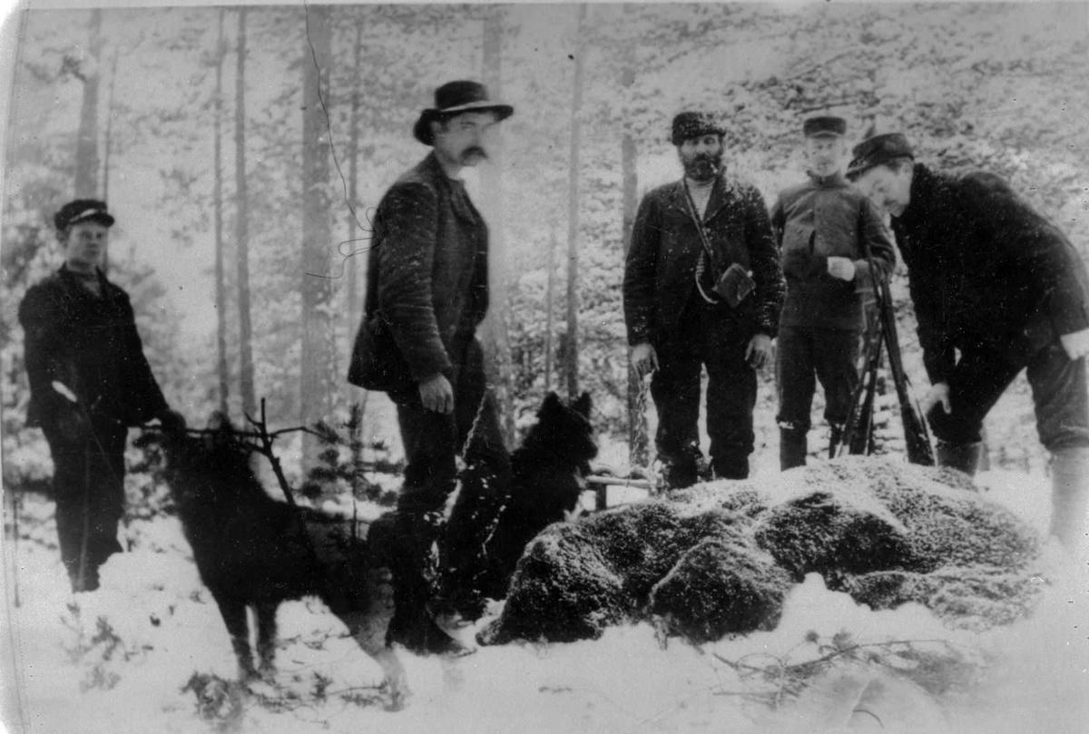 Åmlibilder samlet av Åmli historielag Bjørnejakt i Gjøvdal