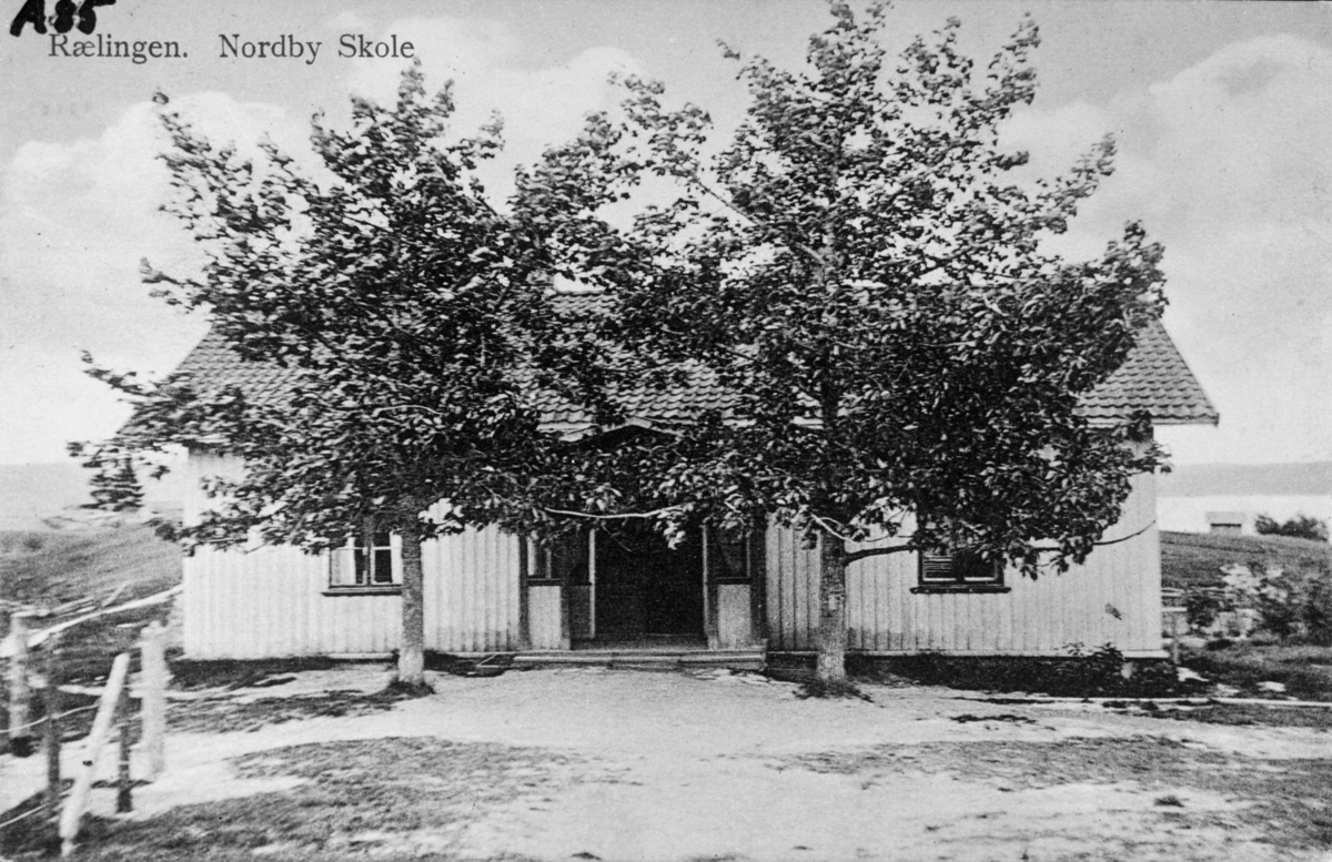 Hesteløkka skole to store trær rett foran