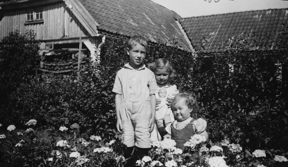 Barna i haven.