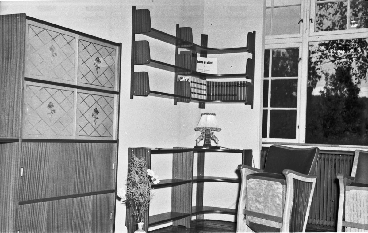 Fra Eidsvoll Bygdeutstilling i 1955.