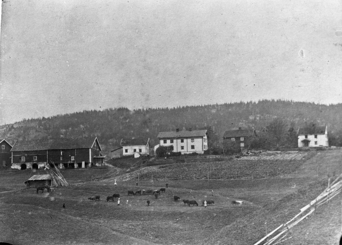 Gårdsbruk 22.04.2013: Nedre Hol gård (østsida) i Eidsvoll. Skrevet av: Trond Gundersen