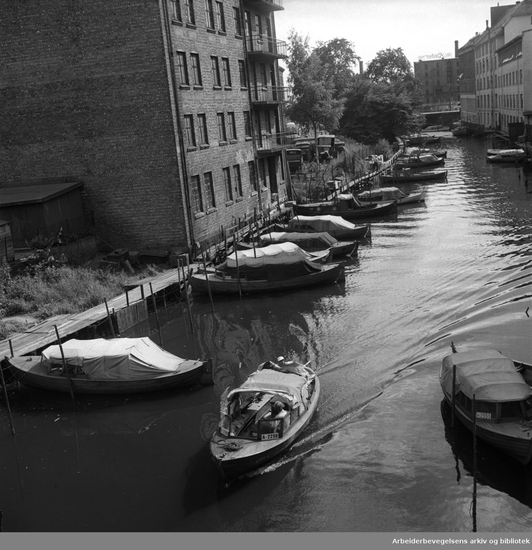 Båter ved Vaterland,.juli 1955