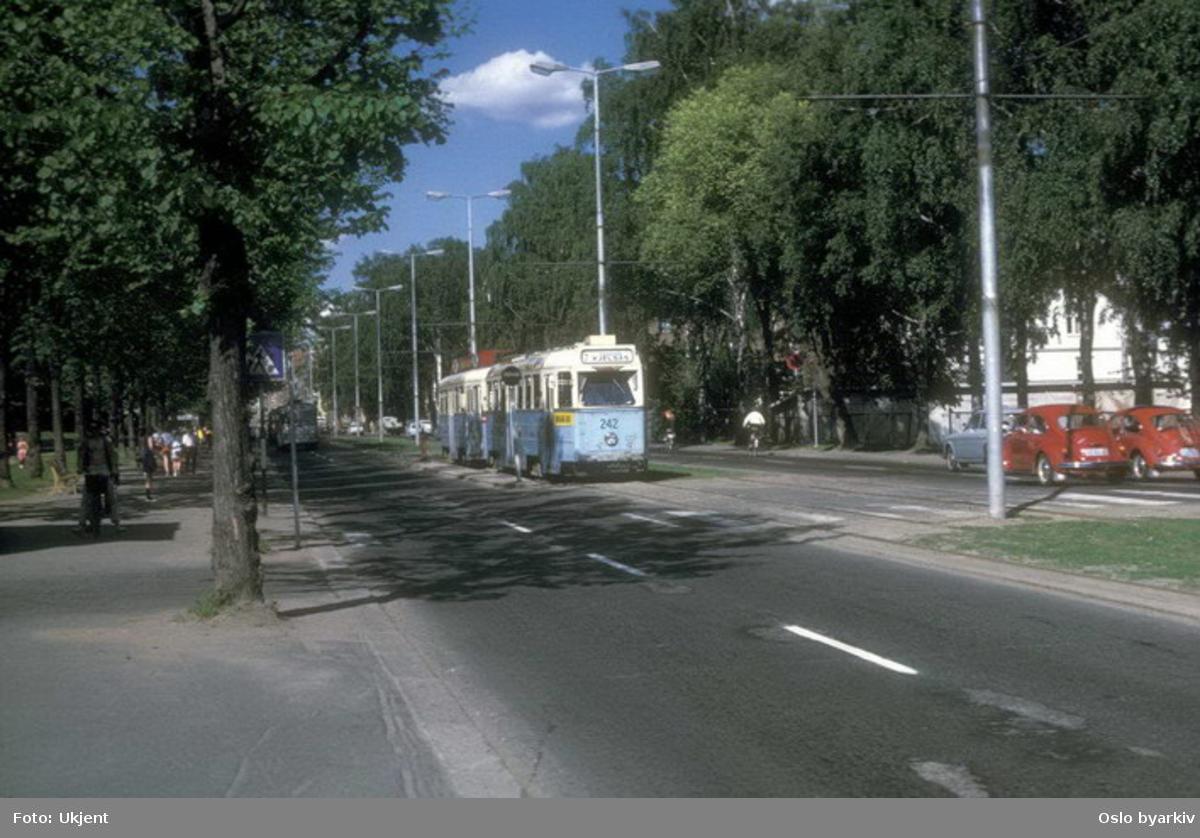 Oslo Sporveier. Trikk motorvogn 242 type Høka MBO linje 2, her ved stoppestedet Vigelandsparken i Kirkeveien, den 10. juni 1969.