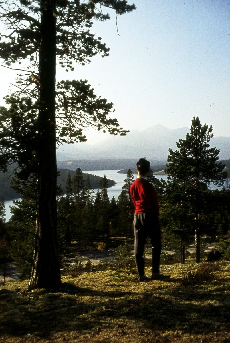 Dis over Rondane