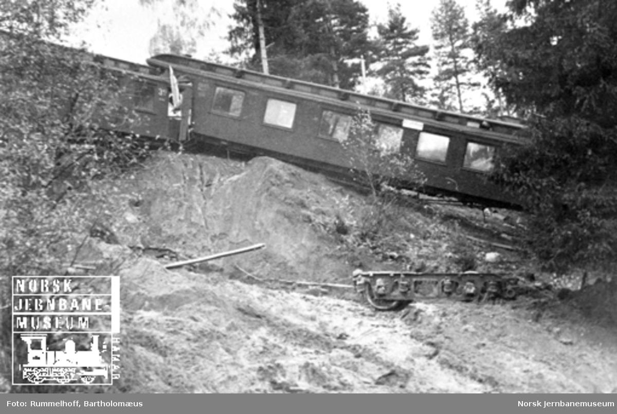 Avsporede personvogner sett fra elvebredden