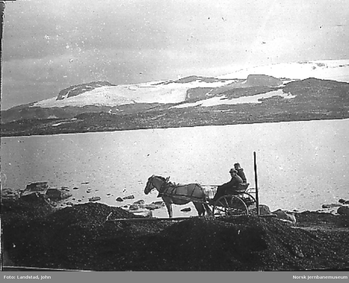 Hest med vogn på anleggsvegen ved Finse