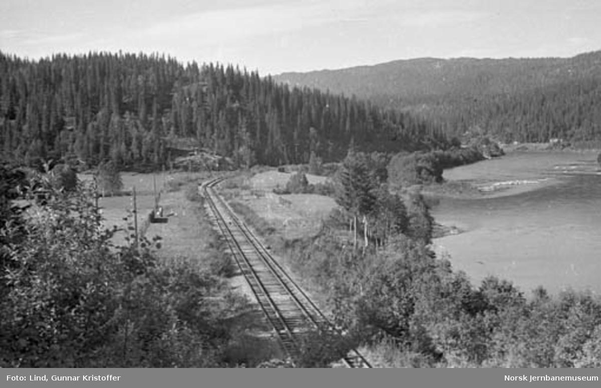 Dunderlandsbanens ombygging : Linjeparti ved Bjørnhei gård