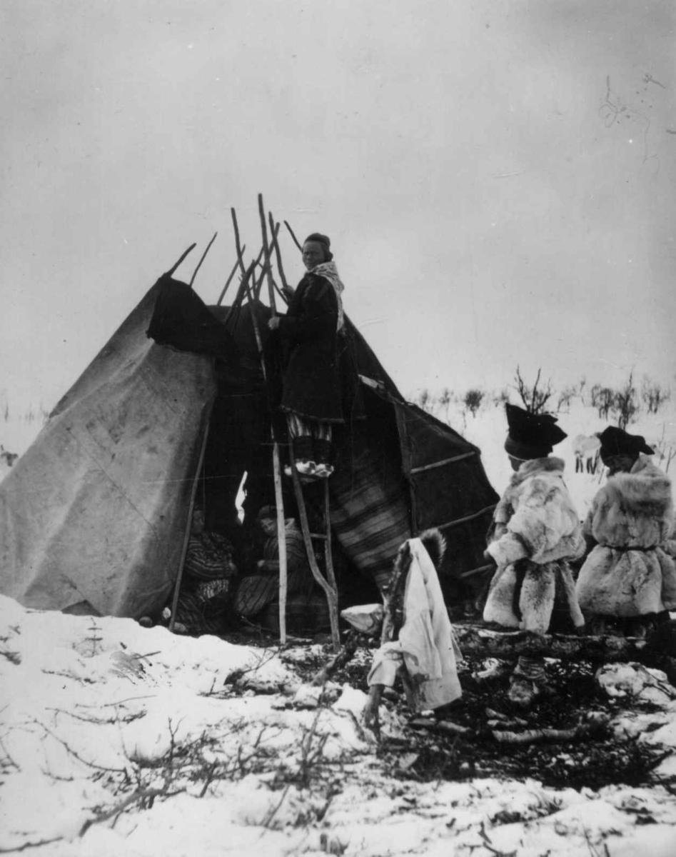 Teltduken tas av, en kvinne står på stigen, to pelskledde personer i forgrunnen og to i teltet. Antagelig i Finnmark.