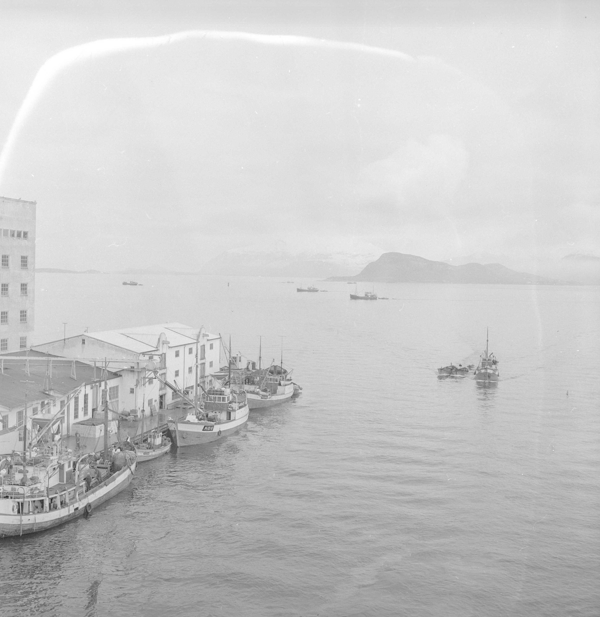 Ålesund, april 1956, sildefiske, fiskeskøyter langs kaia.