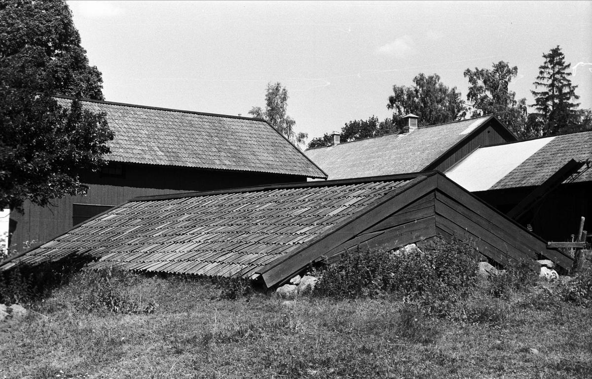 Jordkällare, Lund 3:1, Björklinge socken, Uppland 1976