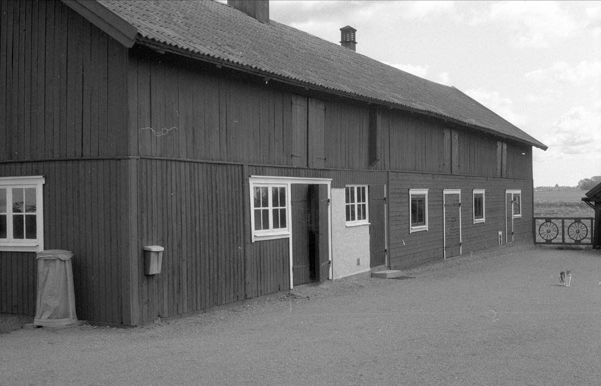 Ladugård, Gesvad, Bälinge socken, Uppland 1983