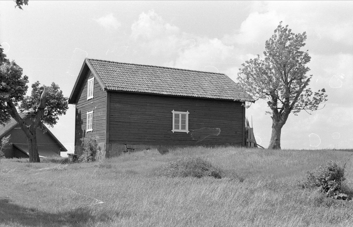 Redskapsbod och källare, Villinge 1:1, Danmarks socken, Uppland 1977
