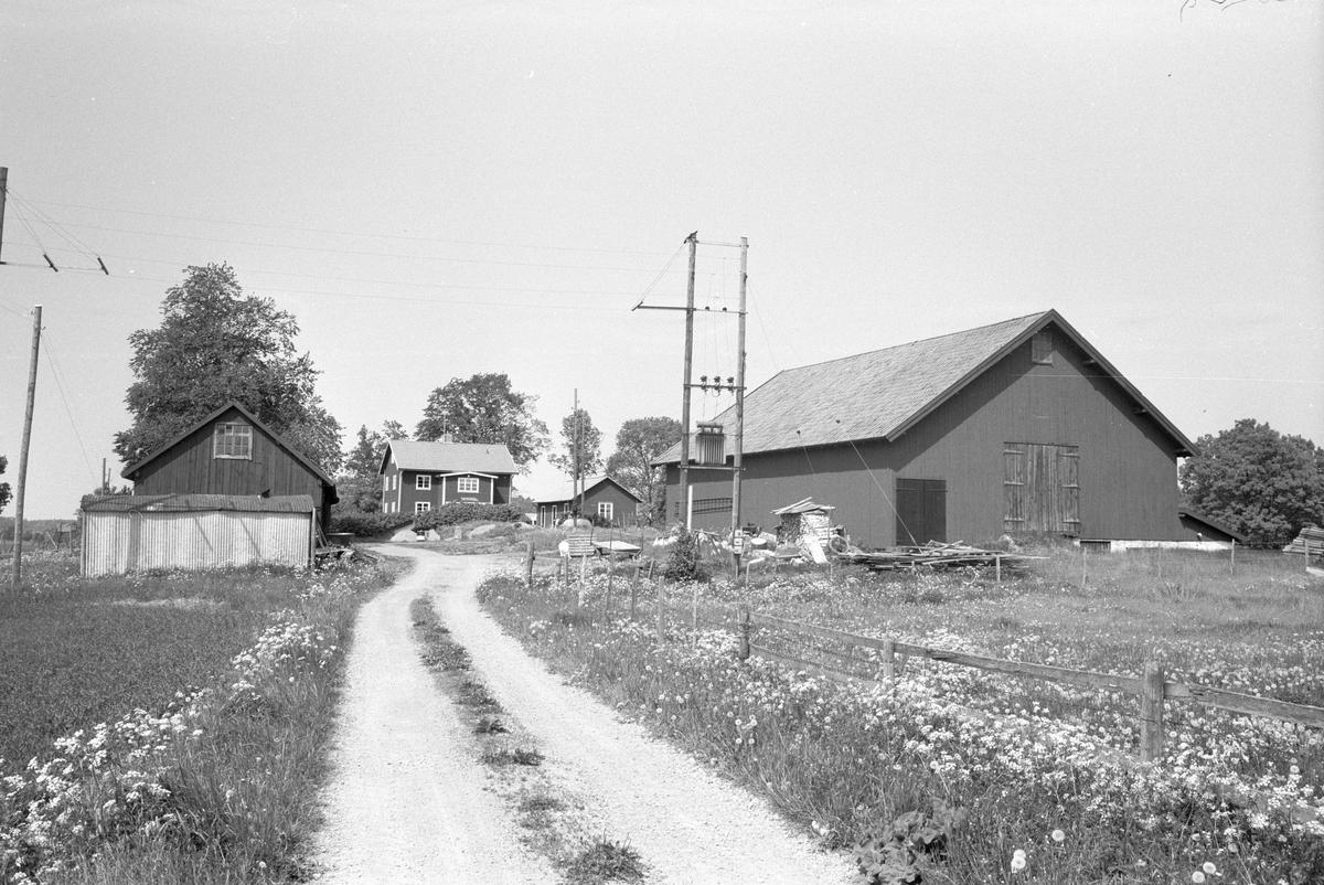 Vy från söder över Ekeby 1:1, Ekeby, Lena socken, Uppland 1977