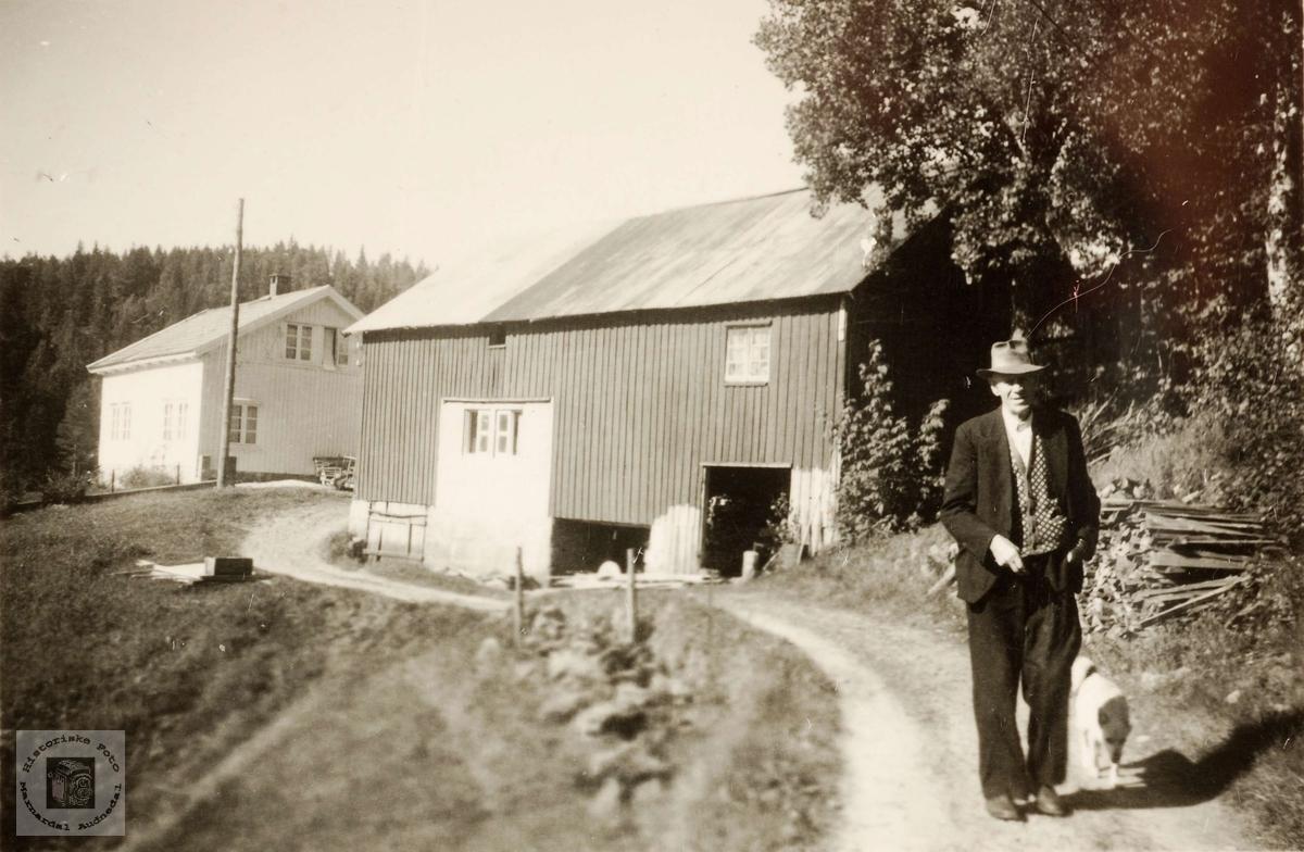 Garden Ringækra i Grindheim.  Myllaren John Leland går tur med hunden.