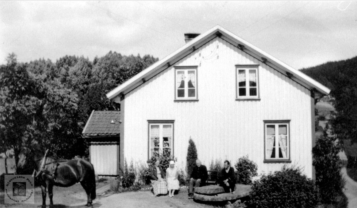 Øygarden i Bjelland, nå Audnedal.