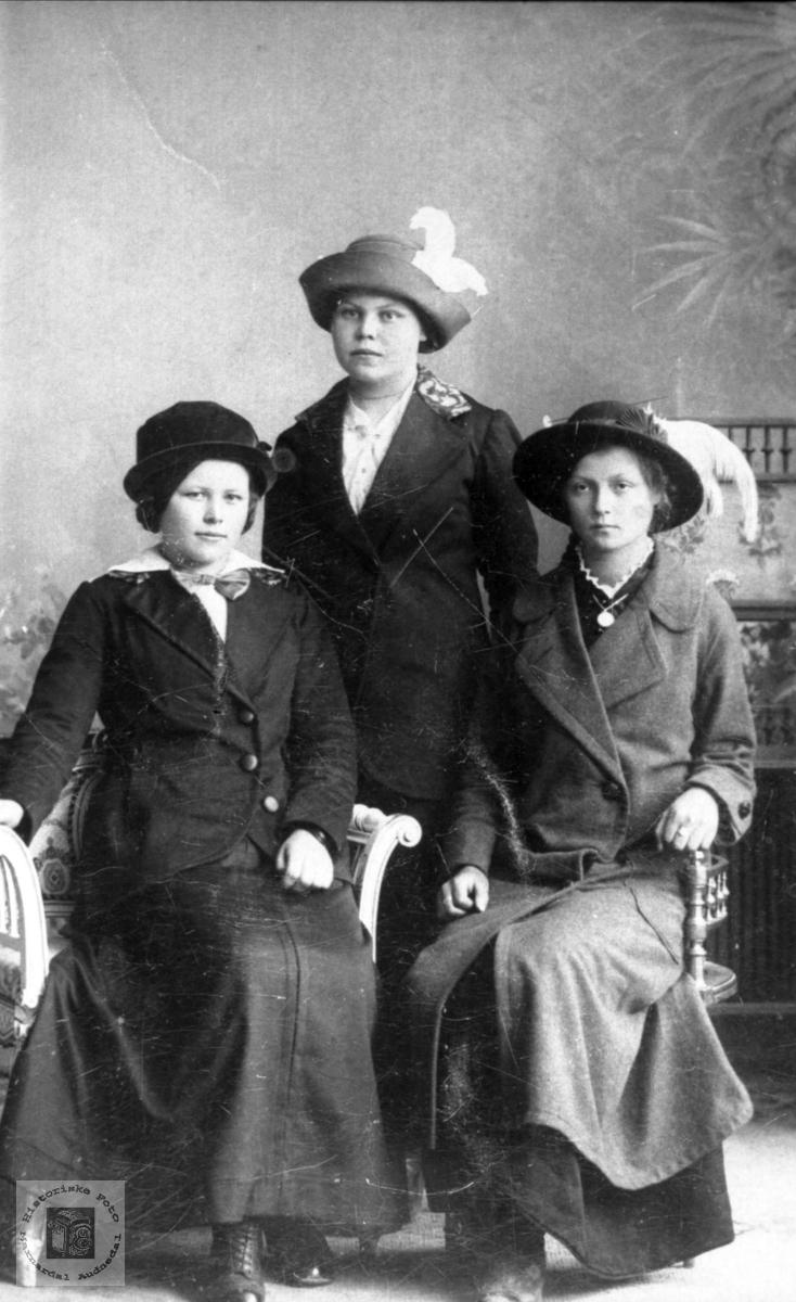 Portrett av tre unge damer i byen, med røtter fra Bjelland og Grindheim.