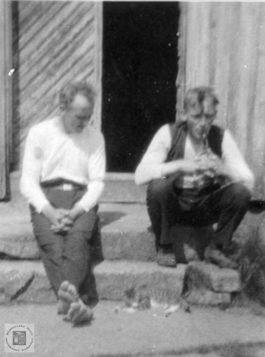 Portrett. Søren og Nils Knudson Skuland Laudal.