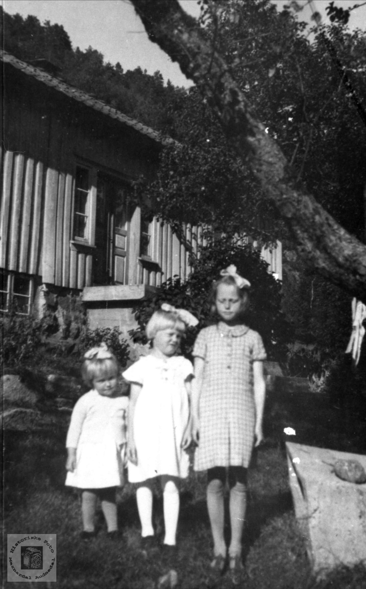 Portrett av tre søstre. Synnøve, Torhild og Anna Laudal, Øvre Laudal.