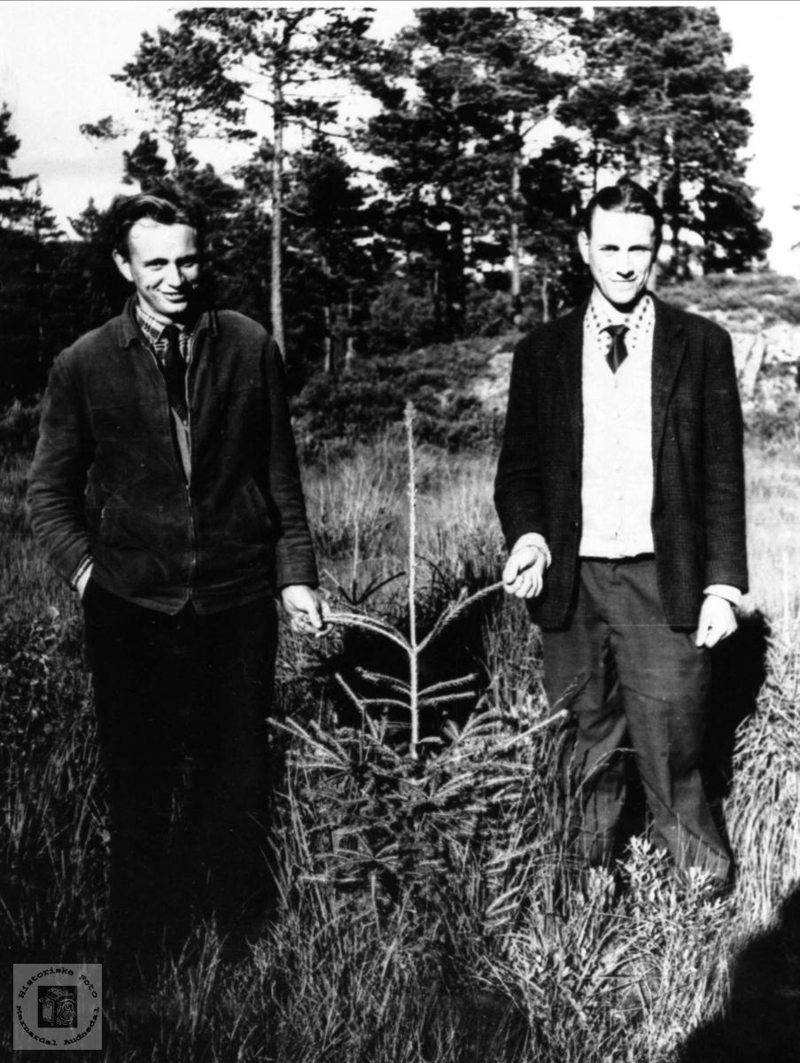 Reinert og Edvart Birkeland i skogen på Birkeland, Laudal.
