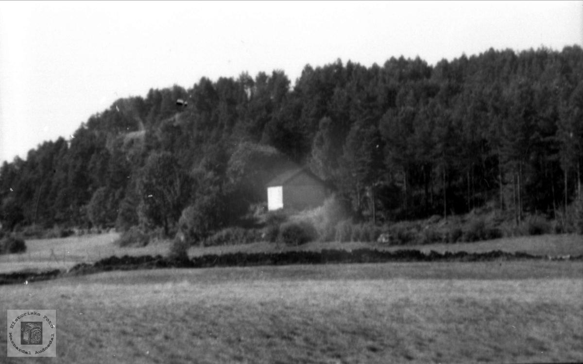Vina Høye`s hus i Drivåsen. Revet i 1959.