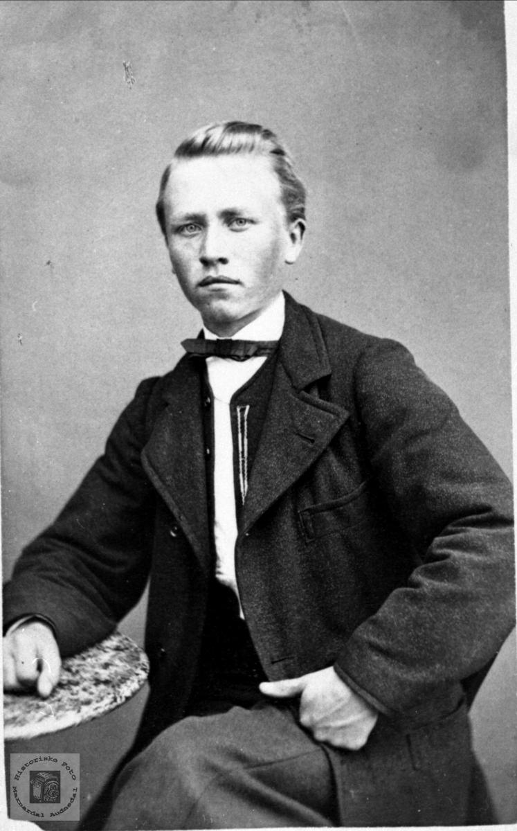 Portrett av Nils Heddeland, Øyslebø.