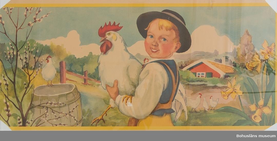 Hörnena bortklippta. Lagad med tejp.  Motiv: Pojke med höna i famnen, påskliljor, röd stuga och hönor. För upplysningar om ägarna, Gunnar och Greta Karlsson, se UM018527. Gåvan omfattar UM024884 - UM024915