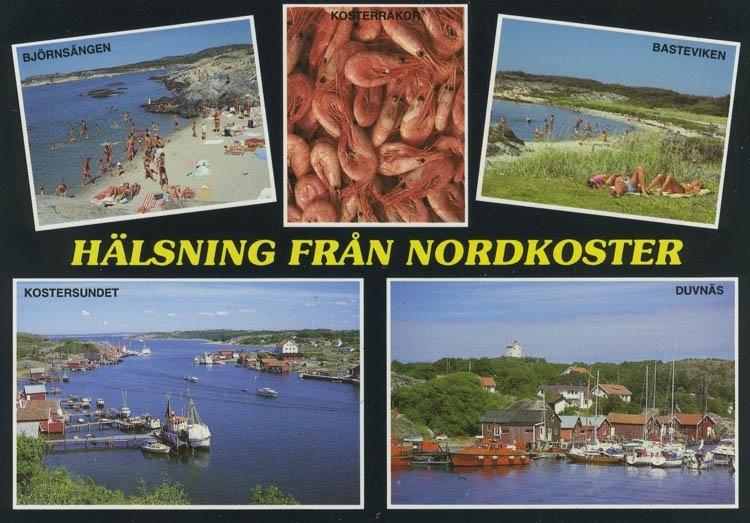 """""""Hälsning från Nordkoster. Björnsängen.Kosterräkor. Basteviken. Kostersundet. Duvnäs""""."""
