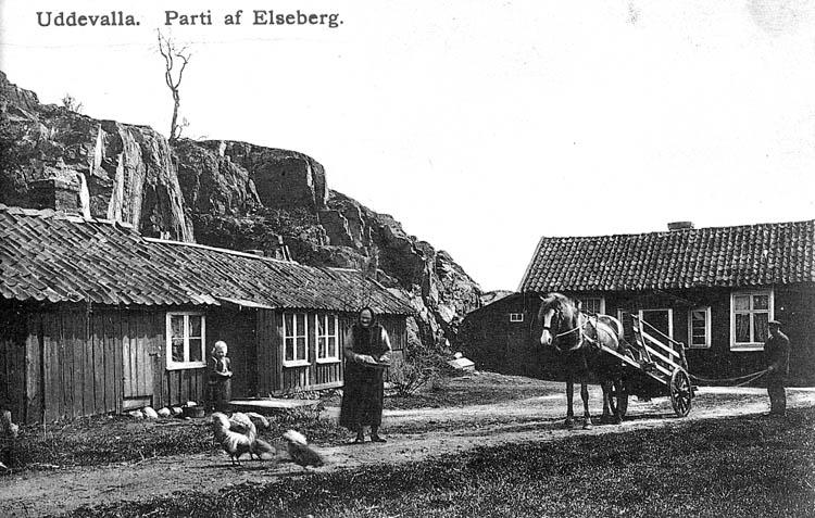 Uddevalla. Parti af Elseberg.