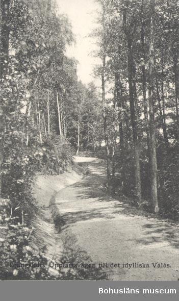 """Tryckt text på kortet: """"Ljungskile. Uppfartsvägen till det idylliska Valås"""". """"Ljungskile Bok & pappershandel""""."""