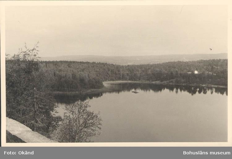 """Noterat på kortet: """"Älgsjön. Näsinge Sn. Vette 22 Sept. 1955."""" """"Utsikt ö. fr.vägen till Boråsgården. Vid denna norra ända av älgsjön hade Carl XII sitt  läger (platsen heter ännu """"Lejer"""") under galärtransporten somm. 1718."""""""