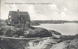 Carl Wilhelmsons villa, Fiskebäckskil