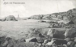 """Tryckt text på kortet: """"Parti vid Fiskebäckskil."""" ::"""