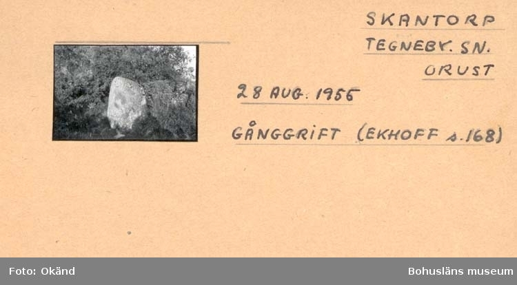 "Noterat på kortet: ""Skantorp Tegneby, Sn. Orust."" ""Gånggrift."" ""Se Litt: Ekhoff s. 168."""