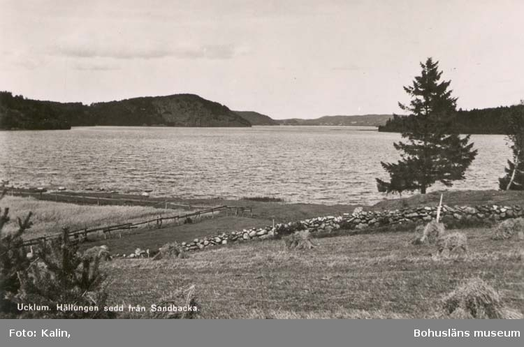 """Tryckt text på kortet: """"Ucklum. Hällungen sedd från Sandbacka."""" """"Foto och förlag: Kalin, Ucklum. Reproduktion förbjuden."""""""