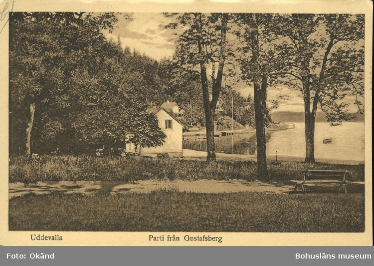 """Tryckt text på vykortets framsida: """"Parti från Gustafsberg."""" ::"""