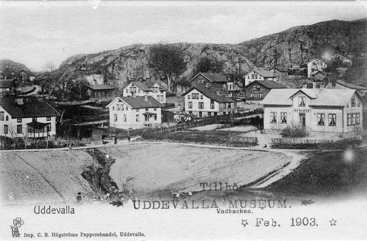 """Tryckt text på vykortets framsida: """"Uddevalla. Vadbacken.""""   ::"""