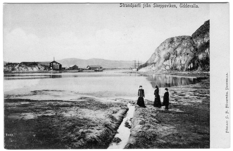 """Tryckt text på vykortets framsida: """"Strandparti från Skeppsviken, Uddevalla."""""""