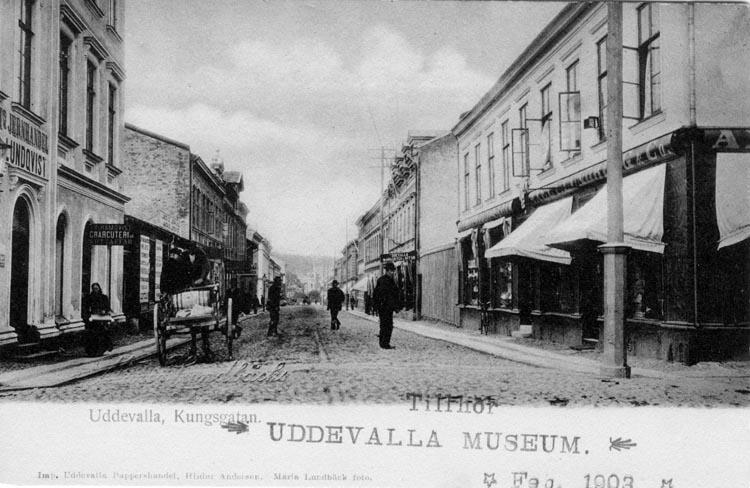 """Tryckt text på vykortets framsida: """"Kungsgatan, Uddevalla.""""  ::"""